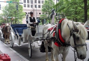 Historic Horse Drawn Carriage Tours
